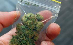 NJ Juvenile Marijuana Possession Lawyer